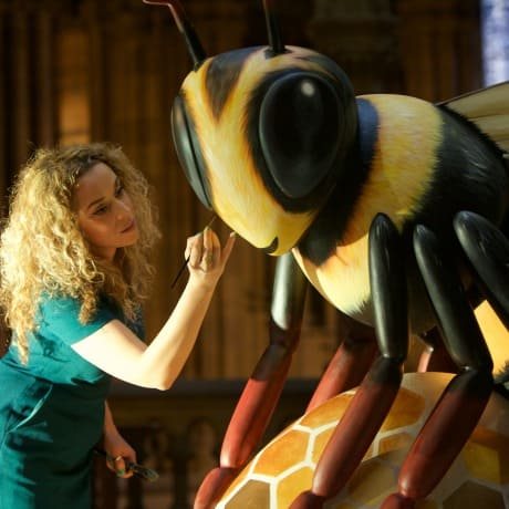 Creating a buzz about Bee in the City